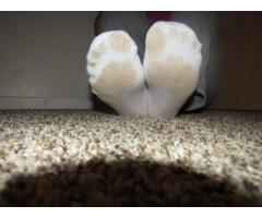 Stinky size 7 socks